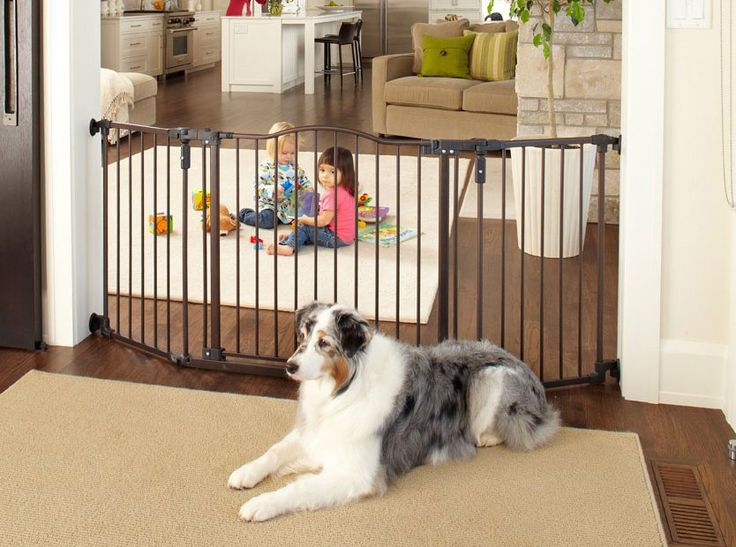 An extra wide pet gate ranges between 44 inches and 200-plus inches wide. We review some of the best extra wide pet gates and compare the best models.