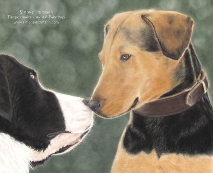 Hundeportrait Landseer und Polnische Bracke, Pastellkreide - Tierportrait nach Fotovorlage von Simone Hofmann - www.simone-hofmann.com -   Pastel portrait of a Landseer and a Polish Hound - Dog painting on velour, 40 x 50 cm (16'' x 20'')