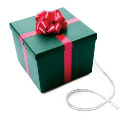 """Ever-Green Seasons Tree Watering System    """"So clever: A watering system disguised as a present keeps your Christmas tree fresh. Whoever thought of this is gifted."""" — Oprah"""
