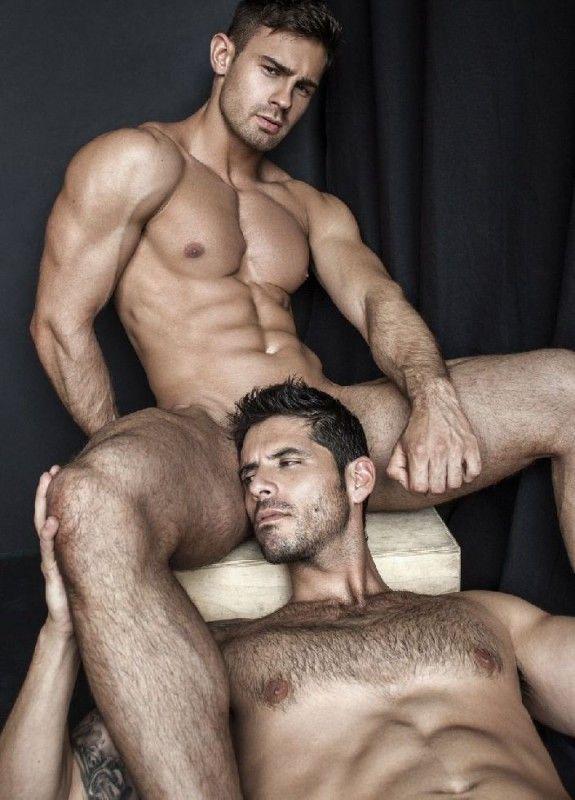 gay asses pounding