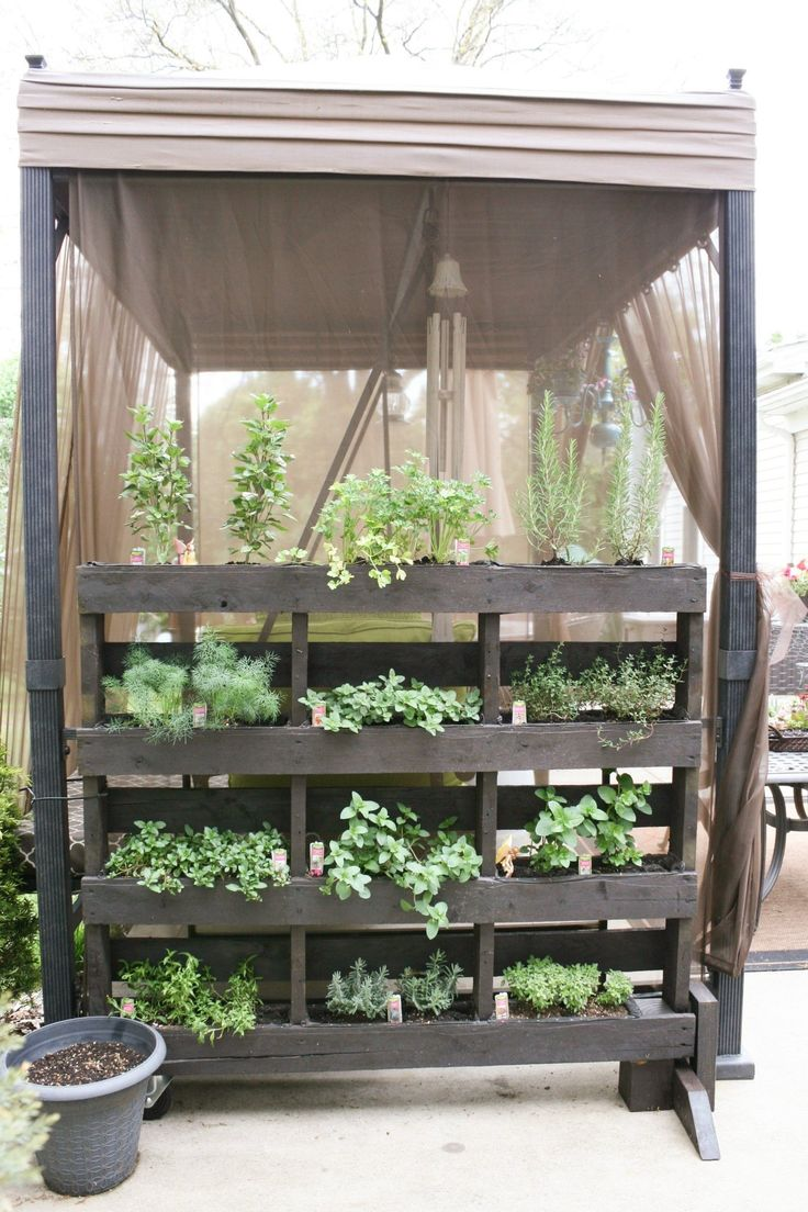 5 Small, Easy Vegetable Garden Setups Apartment Therapy