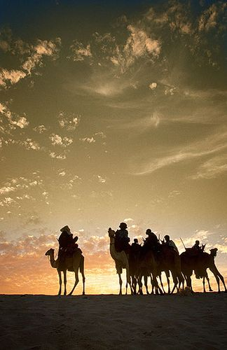 Grupo de Tuaregs en el atardecer del Festival au Desert, Essakane -   Group of Tuaregs into the sunset Festival au Desert, Essakane (January 2004)    www.vicentemendez.com