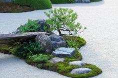 Kamienie ozdobne do ogrodu i kruszywa na zielone dachy - Lider Budowlany
