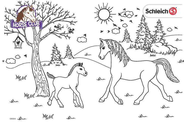 malvorlagen pferdehof  christina sampsons malvorlagen