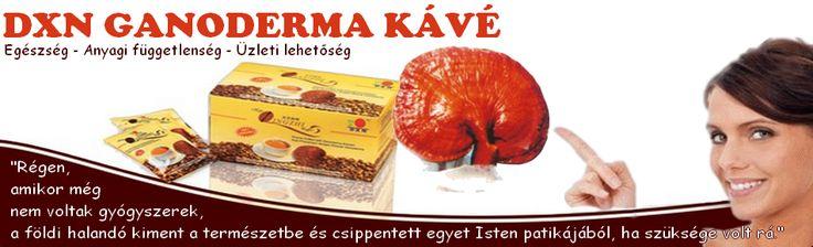 Подарки для всей семьи! Для малышей и стариков! Натуральные , органические и безопасные продукты в любой дом! http://vital.ganodermakofe.ru/