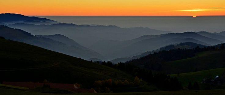 Black Forest - Schauinsland
