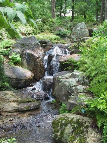 11 Best Images About Hot Magic Springs On Pinterest Parks Hot Springs Arkansas And Roller