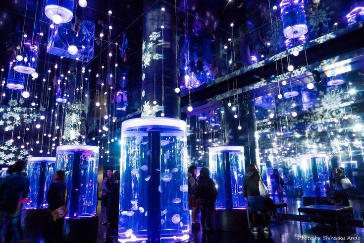 snow aquarium-9(クラゲ)