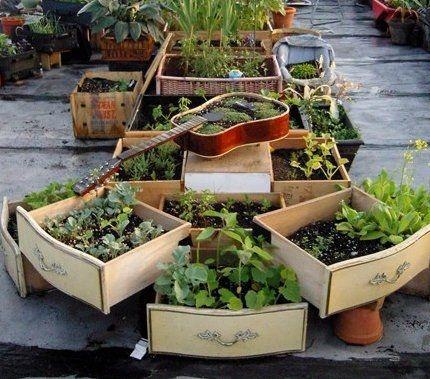 Erbe aromatiche: 10 idee dal riciclo creativo per coltivarle in vaso