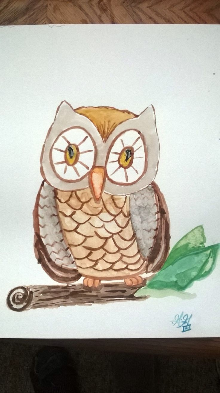 Wise Owl. Watercolor