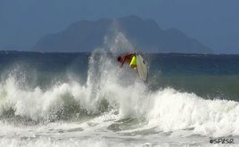 Rincon Surfing , Surfing  Beaches, Surf Reports, Surfing Information, Surf Shops