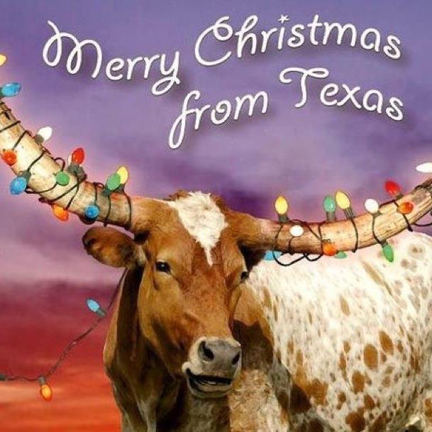A Merry Texas Christmas to You