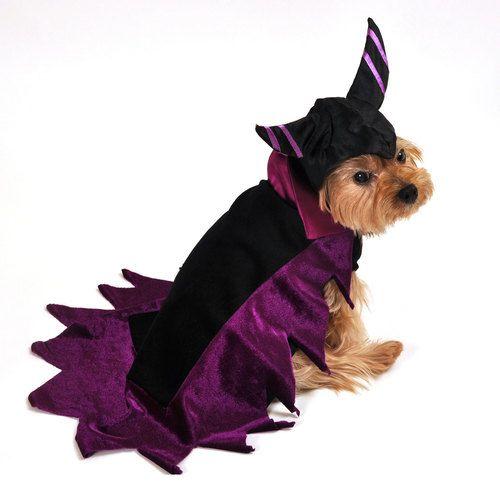 Dog Costume-Wicked Dark Fairy Cape