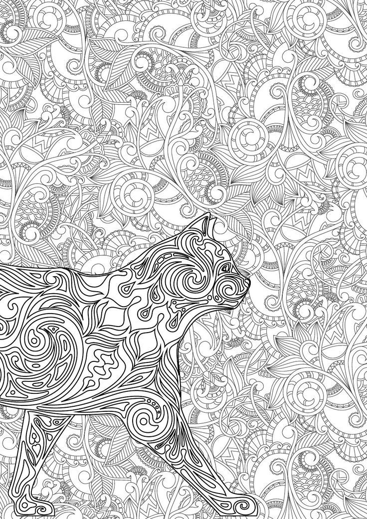 Blank Coloring Pages Books Stress Reliever Book Stuff Kid Mag Online Cat Colors Young Adults Zentangle
