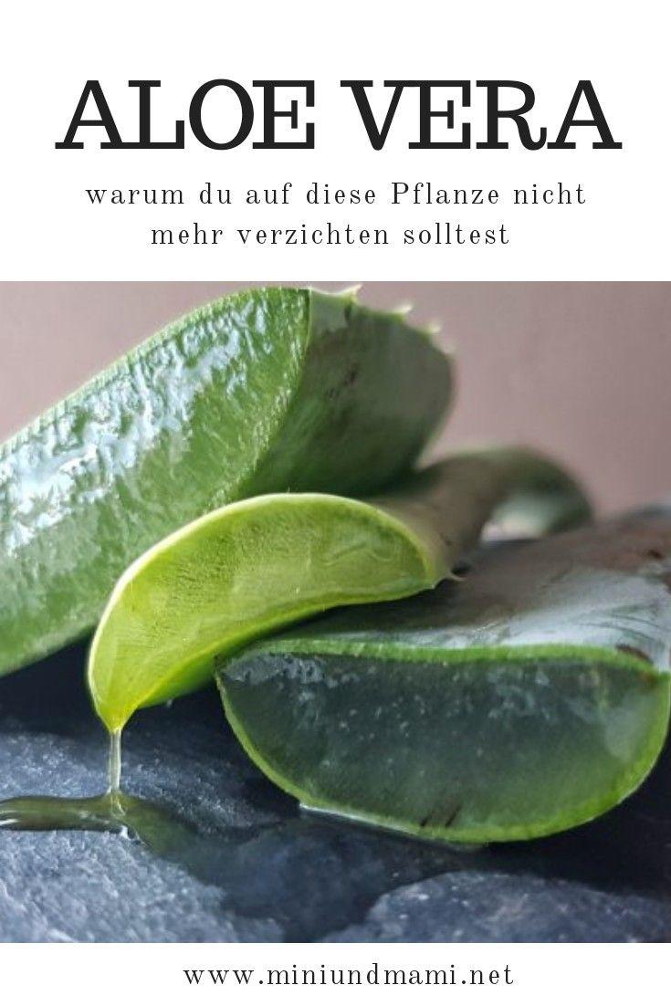 Aloe Vera und warum du diese #heilpflanze unbedingt nutzen solltest