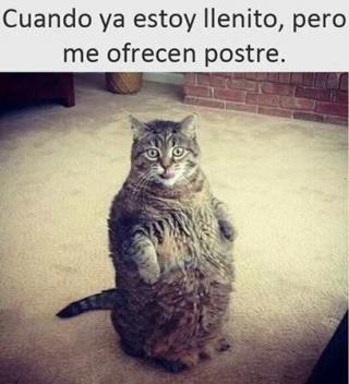 Humor(es) #10698314