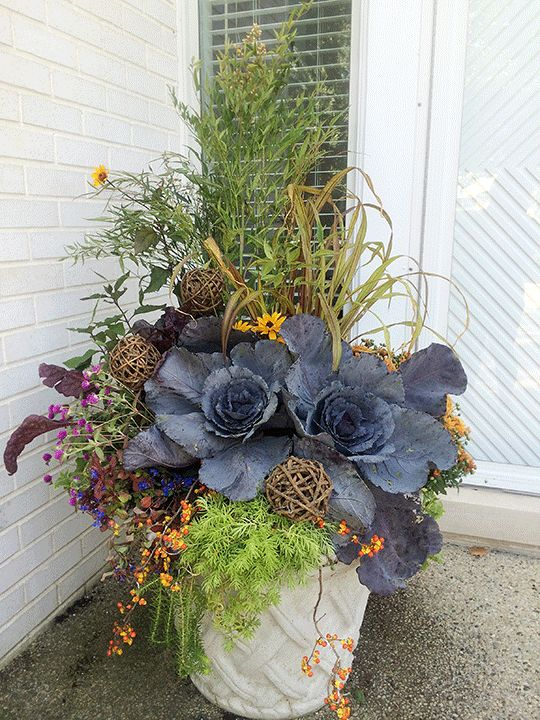 17 best ideas about fall containers on pinterest fall container gardening fall container - Potted autumn flowers ...