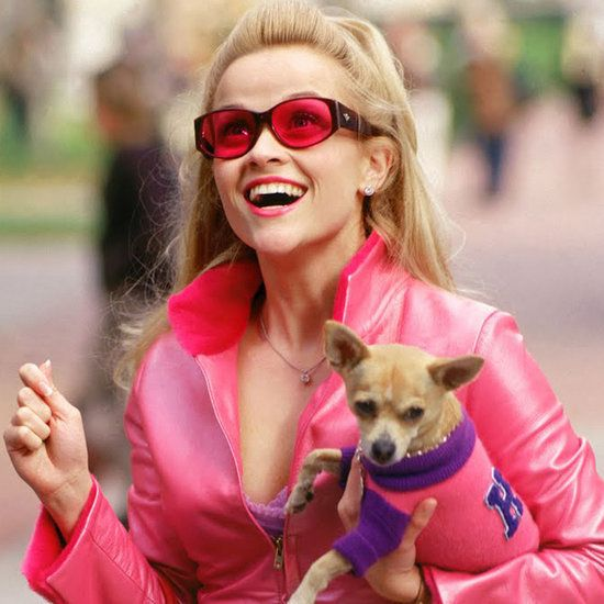 Legally Blonde GIFs