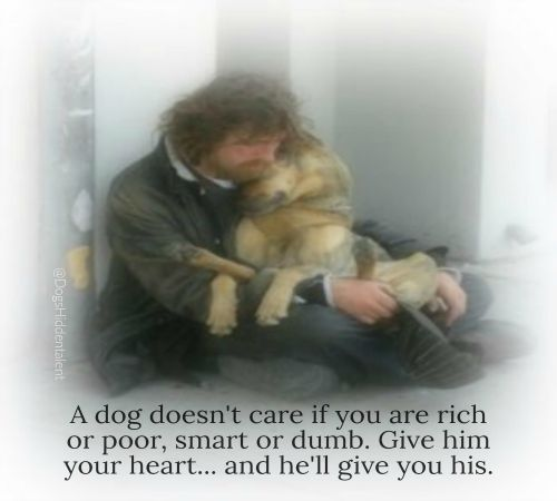 """""""A dog doesn't care if are rich or poor, smart or dumb. Give him your heart and he'll give you his.""""  Dogs love for man knows no bounds.... unconditional!  Like/Share :)"""