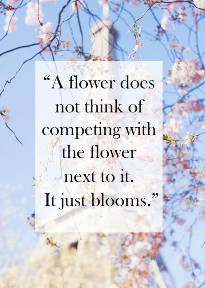 Flowers Don T Compete They Just Bloom Inspiring