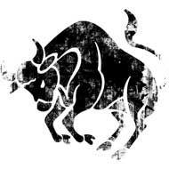Volgens de astrologie zijn stieren vastberaden en daadkrachtig! Klopt helemaal.