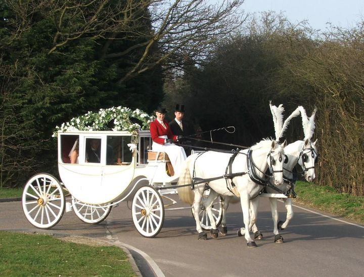 An Unsinkable Love Jack Dawson X Reader Walking Into Eternity 11 In 2021 Wedding Carriage Horse And Carriage Wedding Baby Blue Weddings