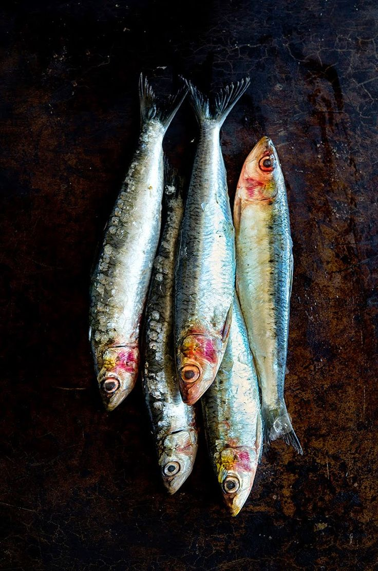 Pasta Con Le Sarde Pasta With Sardines Food Images