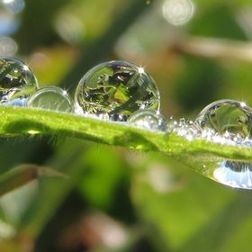 """WaterDropsPhotoContest"" by sammysorensen"