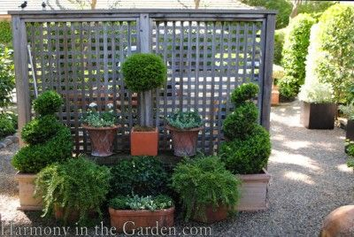 Free Standing Lattice Privacy Screen Garden Privacy