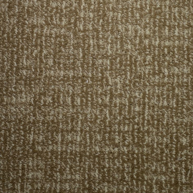 shop stainmaster petprotect caballero biscay cut and loop indoor carpet at lowescom