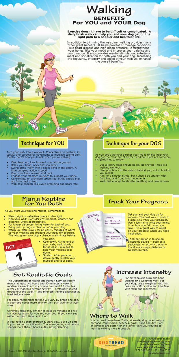 Walking Benefits For You and Your Dog115 best Dog Walking Resources images on Pinterest   Dog walking  . Dog Walkers Bath Area. Home Design Ideas