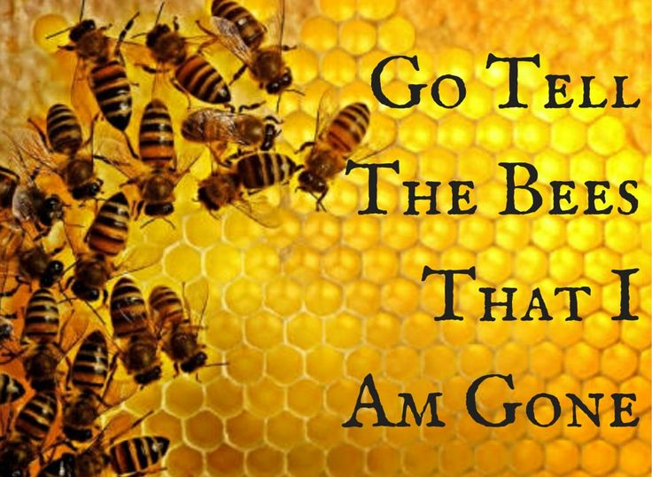 "Book 9 in the OUTLANDER series by Diana GABALDON ~ The title comes from an old Celtic folklore custom when people kept beehives. It was traditional to go and tell the bees all the gossip of the community. If someone died and you didn't tell the bees, they would become annoyed and fly away. | The story will see Jamie in his late 50's and Claire in her early 60's, which Diana described as the ""prime of life""."