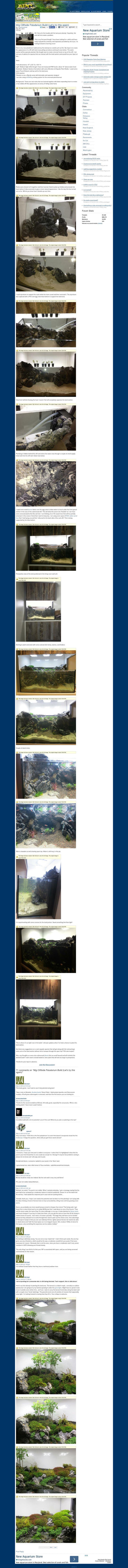e3ce65c1fe3a9bbe478a60b37a6706bc--aquarium Frais De Aquarium tortue Aquatique Schème