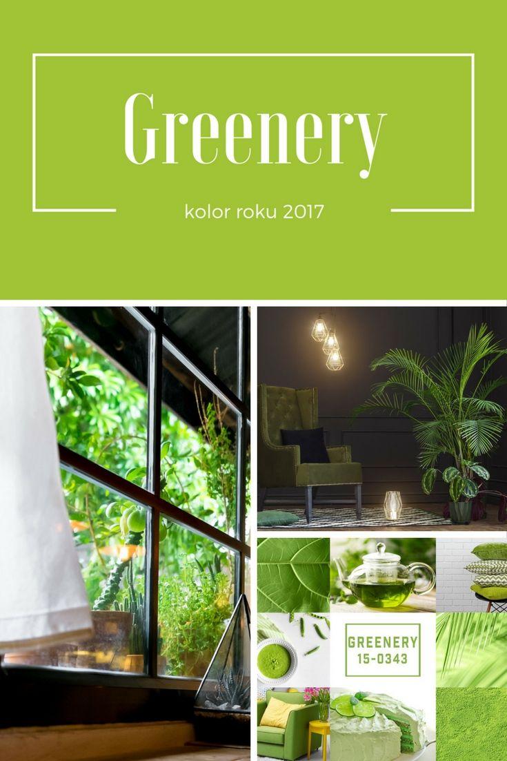 Jakie trendy wśród kolorów królują w 2017 roku? Nowy wpis http://blog.mirjan24.pl/jakie-trendy-wsrod-kolorow-kroluja-w-2017-roku-cz-1/ || Trends 2017 || Colours 2017 || Greenery  #greenery #trends #colours #mirjan24