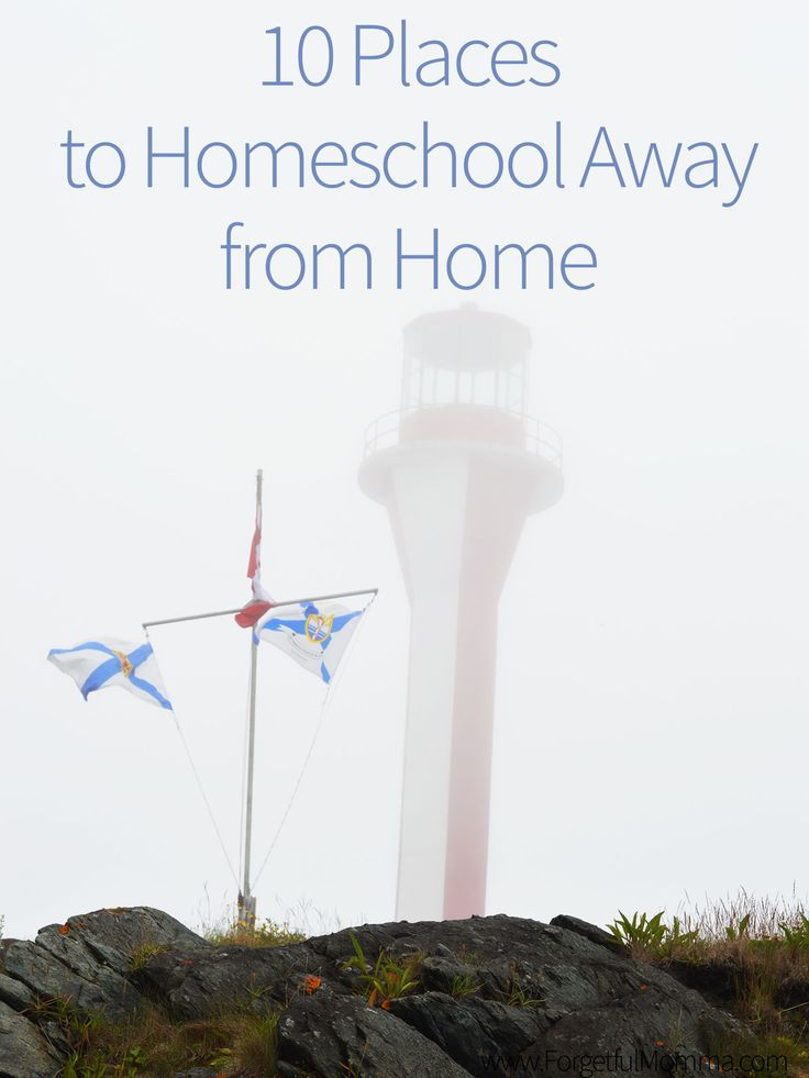 Just because you homeschool, doesn't mean that you have to stay home. There are so many places to homeschool out in the world to be stuck at home.