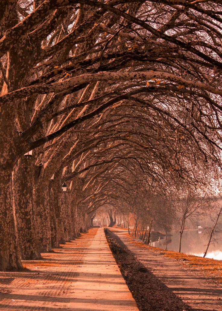Autumn Magic - The Charms of Portugal's Oldest Village. Ponte de Lima.