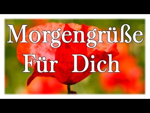 Guten Morgen Gruß für dich ☼ Good morning greeting for you - YouTube