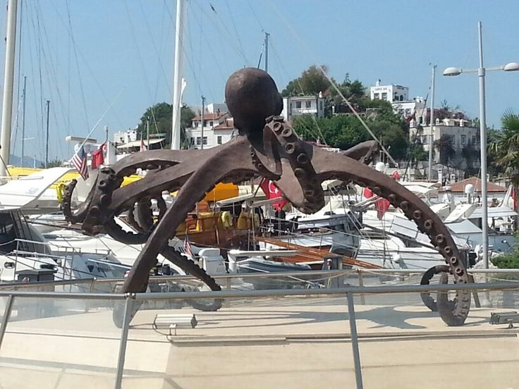 Octopus. Marmaris, Turkey.