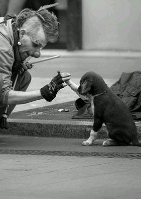 La sensibilità è una forma di intelligenza, è inutile cercare di spiegarla a chi ne è privo.