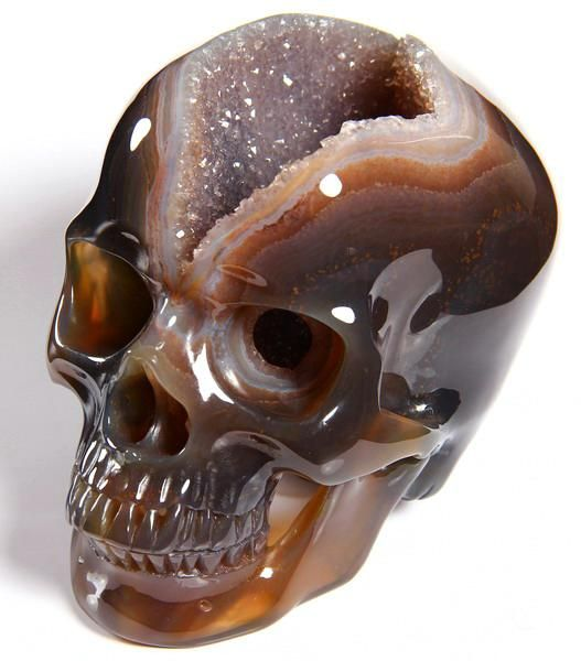 moshita: finest crystal and gemstones skulls ... - ~Wunderkammer~