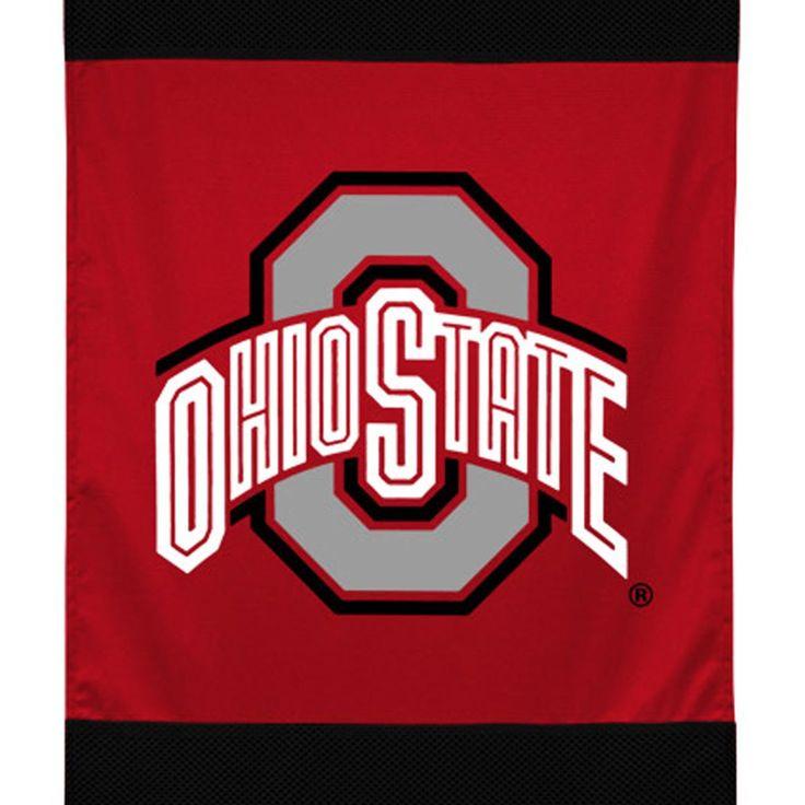 NCAA Ohio State Buckeyes Hockey Logo Wall Hanging Accent