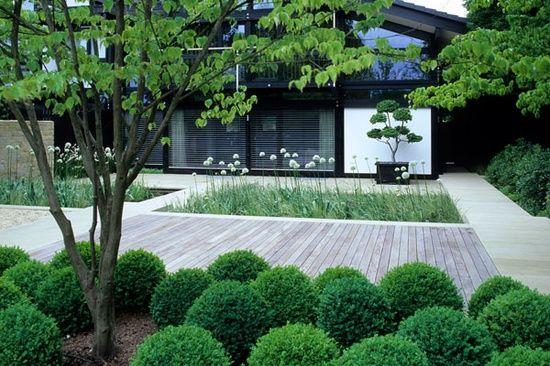 simple elegant contemporary garden design