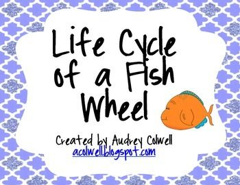 This printable is designed to create a fact wheel that shows the main stages in the life cycle of a fish. Just print one copy of each printable, and cut out the circles. Then, fasten them together with a brad in the center, and turn! Have students talk about the stages as they turn the wheel.