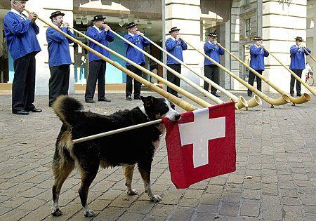 National Day Switzerland | Swiss National Day - swissinfo.ch