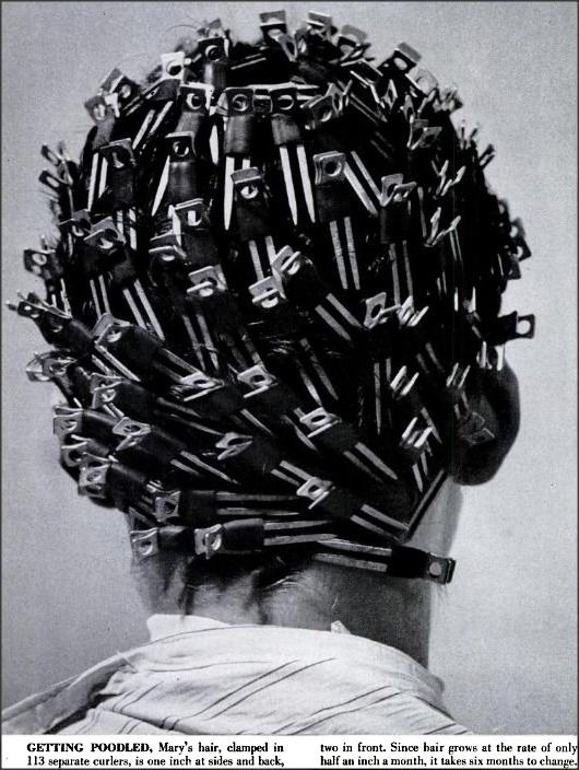 """Poodle clips! 1952    """"The hairdressing salon at Best & Co. in New York poodles nearly 500 heads per day, or 4 out of every 5 of the haircuts given there. Salons outside of New York reported that an average of a third of all of their haircuts are poodles."""""""