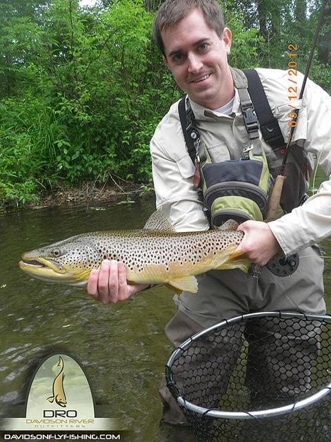15 best davidson river north carolina images on pinterest for North carolina trout fishing