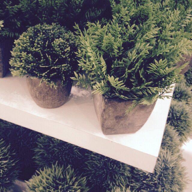 Plantas falsas para darle verde al depto. Falabella