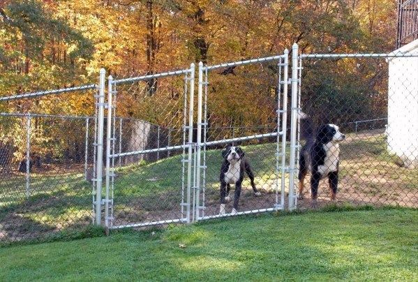 Top 60 Best Dog Room Ideas Canine Space Designs Dog Fence Cheap Portable Dog Fence Cheap Dog Kennels