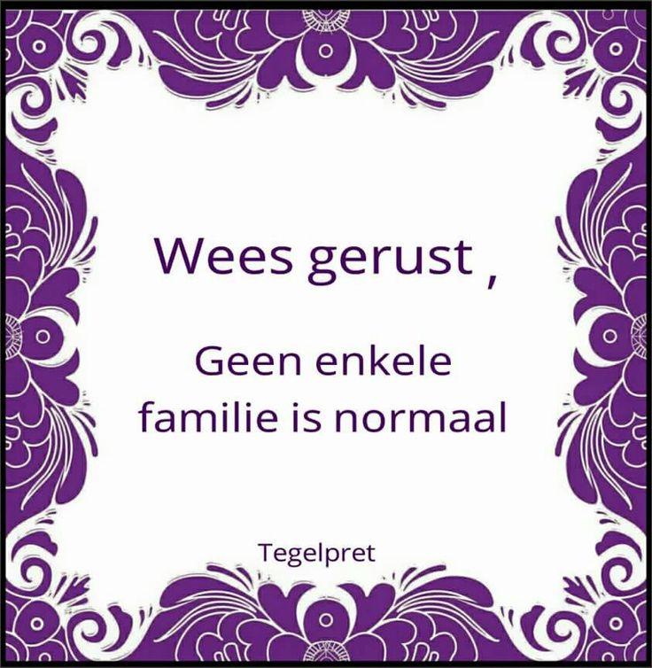 Grappige Citaten Familie : Grappige familie citaten op pinterest gekke