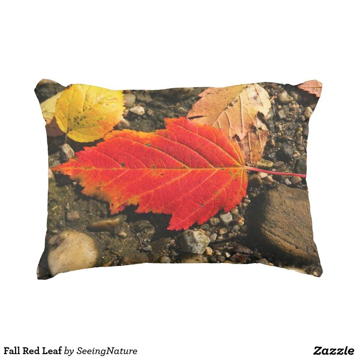 Fall Red Leaf Accent Pillow